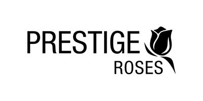 Prestige Roses